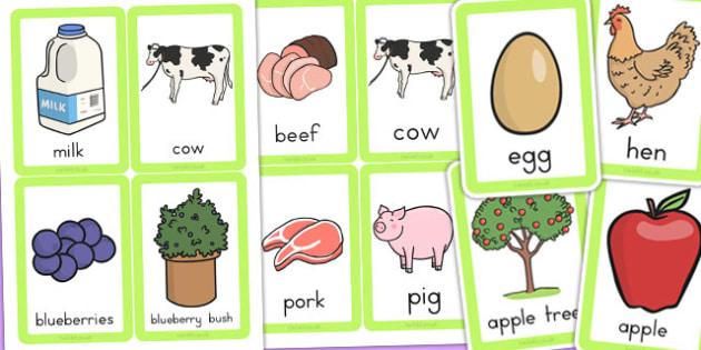 Food Origins Matching Cards - food origin, match, sort, order