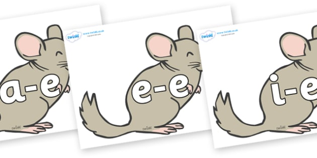 Modifying E Letters on Chinchillas - Modifying E, letters, modify, Phase 5, Phase five, alternative spellings for phonemes, DfES letters and Sounds