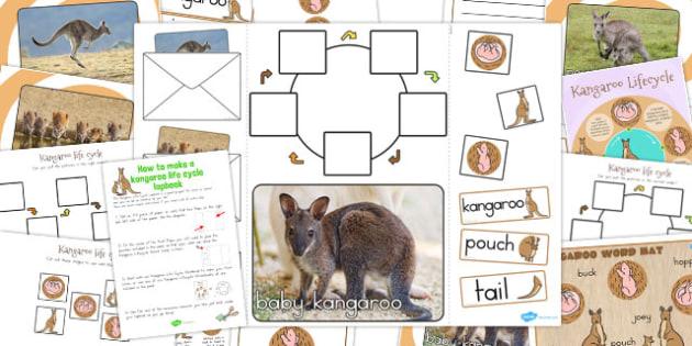 Kangaroo Life Cycle Lapbook Creation Pack - australia, lapbook
