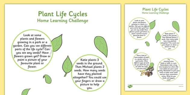 EYFS Plant Life Cycles Home Learning Challenge Sheet Nursery FS1 - EYFS, homework, Early years, plants and growth