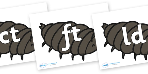 Final Letter Blends on Woodlice - Final Letters, final letter, letter blend, letter blends, consonant, consonants, digraph, trigraph, literacy, alphabet, letters, foundation stage literacy