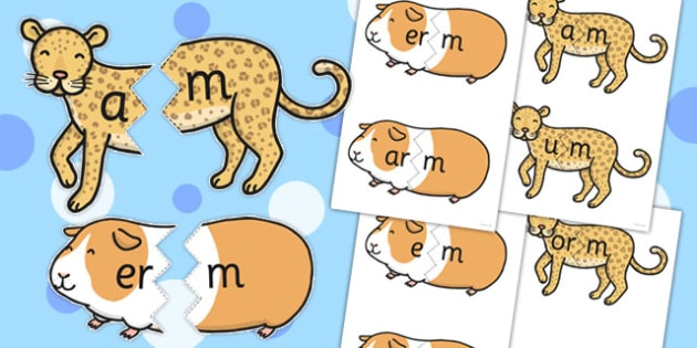 Vowel And Final M Sound Animal Jigsaws - final m, sound, animal