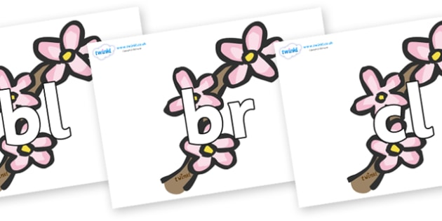 Initial Letter Blends on Blossom - Initial Letters, initial letter, letter blend, letter blends, consonant, consonants, digraph, trigraph, literacy, alphabet, letters, foundation stage literacy