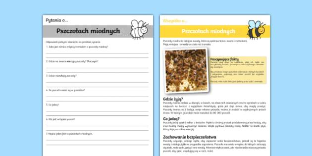 Czytanie ze zrozumieniem Pszczoły miodne