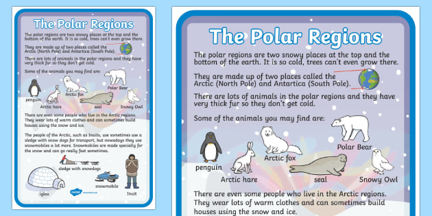 Polar Regions Large Information Poster - poster, polar, display
