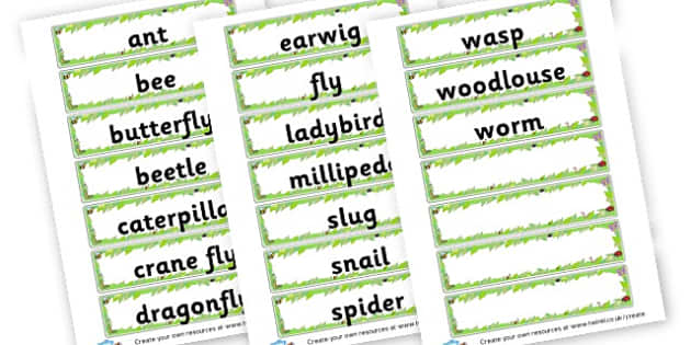 Minibeast Themed Labels - Minibeasts Classroom Signs Primary Resources, minibeast, bugs
