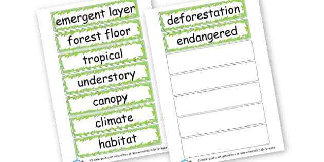 Rainforest Key Words - Jungle & Rainforest Keywords Primary Resources, tropical, animals