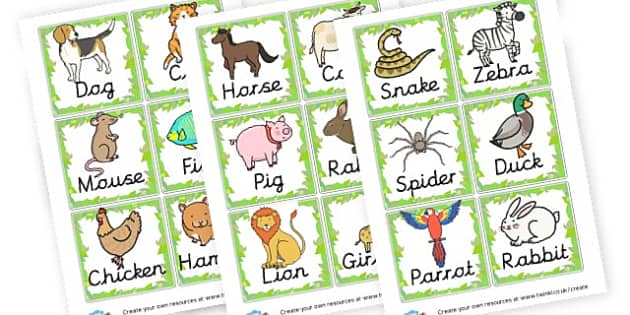 Animal cards - Animals Keywords Primary Resources, letters, phonics, sounds, dfes