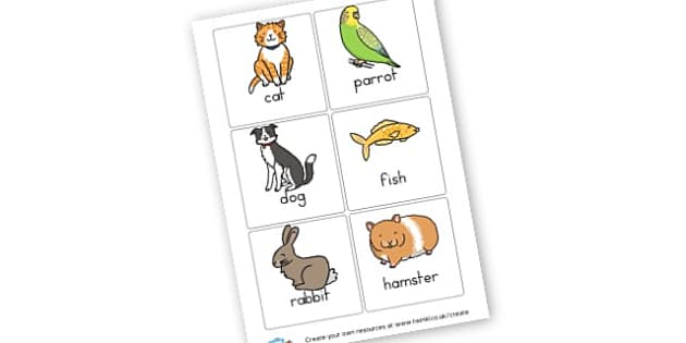 Pet Labels - Pets Primary Resources, pet, animal, living things, cat, dog