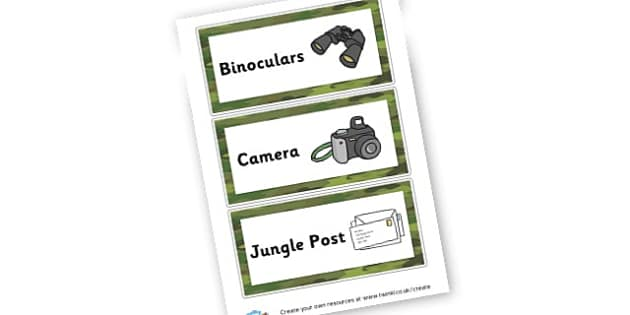 Jungle explorer labels - Jungle & Rainforest Classroom Signs and Labels Primary Resources