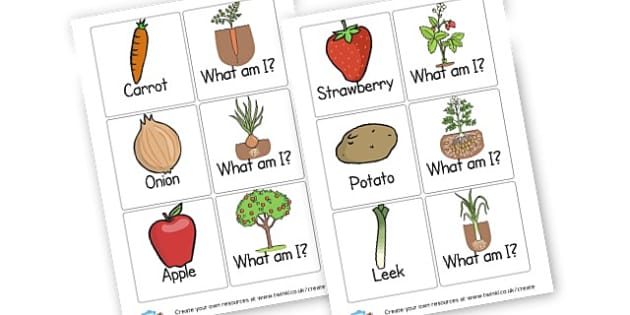 SEN Food & Growth Matching - Food, Drink and Eating Games and Activities Primary Resources - F