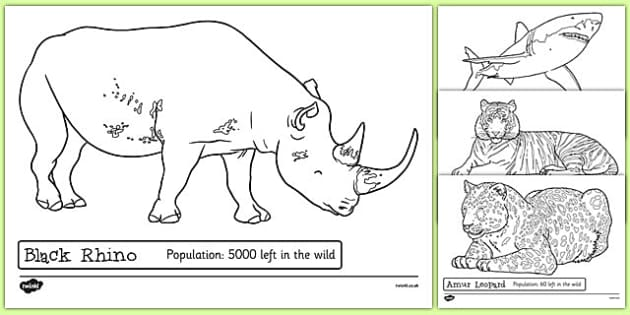 Endangered animals colouring sheets endangered animals for Endangered species coloring pages