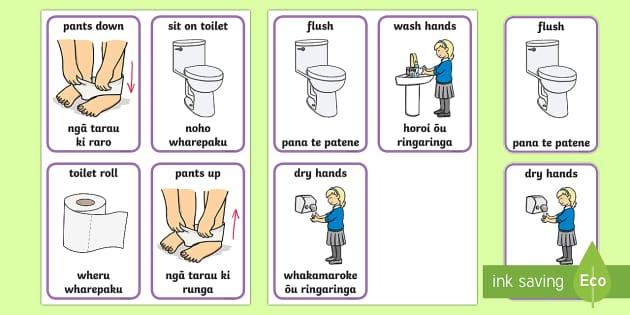 Toilet Procedure Flashcards English Te Reo Māori New Zealand