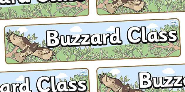 Buzzard Themed Classroom Display Banner - Themed banner, banner, display banner, Classroom labels, Area labels, Poster, Display, Areas