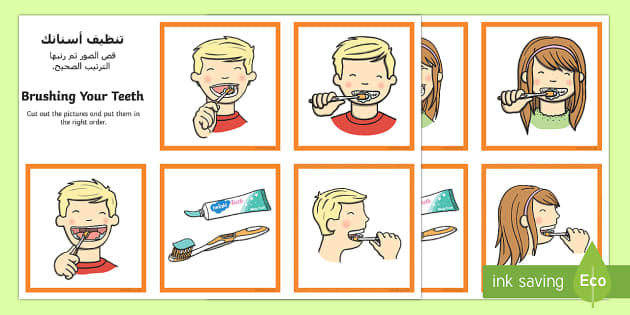 Brushing Your Teeth Sequencing Cards Arabic/English - Brushing Your Teeth Sequencing Cards - brush, brushing teeth, teeth, sequence, sequencing cards, car