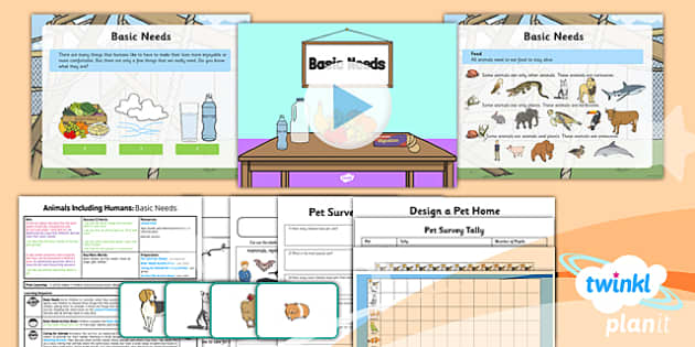 Basic Needs Of Animals Worksheets : Science animals including humans basic needs year lesson