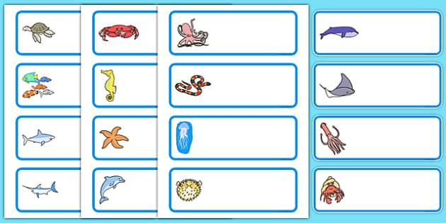 Editable Drawer Peg Name Labels Sea Creatures