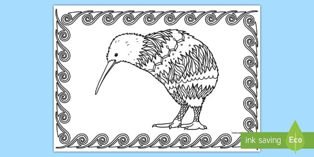 Kiwi Mindfulness Colouring Page English New Zealand New