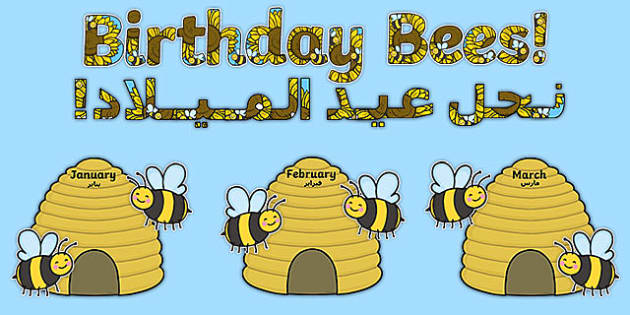 Birthday Bees Display Pack Arabic Translation - arabic, Signs and Labels, bees, insects, honey, birthdays