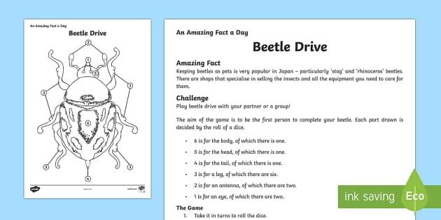 A Beetle Drive Beetle Drive Game