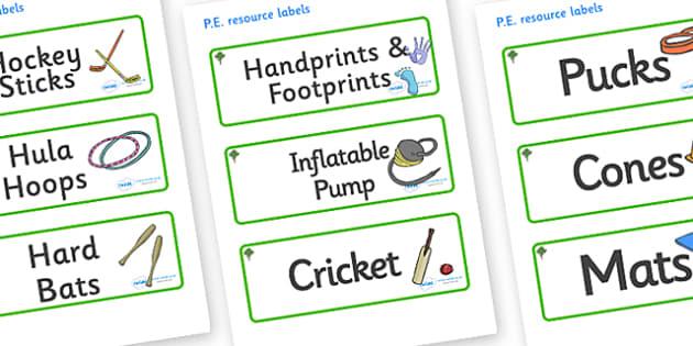 Katsura Tree Themed Editable PE Resource Labels - Themed PE label, PE equipment, PE, physical education, PE cupboard, PE, physical development, quoits, cones, bats, balls, Resource Label, Editable Labels, KS1 Labels, Foundation Labels, Foundation Sta