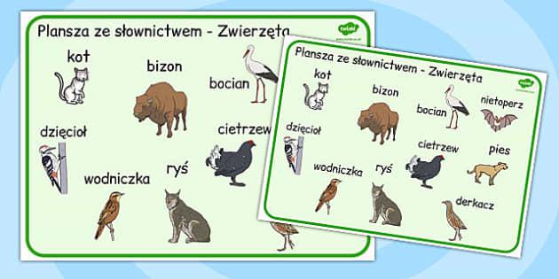 Karty ze slownictwem Zwierzeta po polsku - nauczyciele , Polish