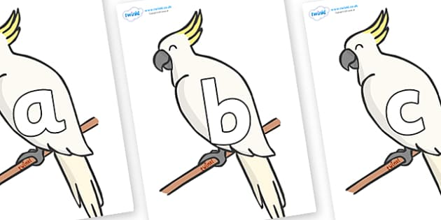 Phoneme Set on Cockatoos - Phoneme set, phonemes, phoneme, Letters and Sounds, DfES, display, Phase 1, Phase 2, Phase 3, Phase 5, Foundation, Literacy