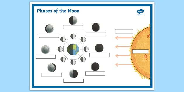 Phases of the Moon Labelling Worksheet with Answer Boxes – Phases of the Moon Worksheets