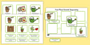 Plant Growth Sequencing Activity