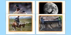 Photographs to Stimulate Conversation Photo Pack