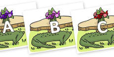 A-Z Alphabet on Trick Four to Support Teaching on The Enormous Crocodile
