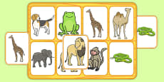 Matching Cards and Board to Support Teaching on Dear Zoo