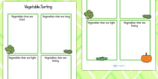 Vegetable Sorting Activity Sheet