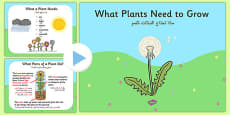 What Plants Need to Grow PowerPoint Arabic Translation