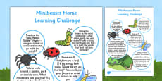 EYFS Minibeasts Home Learning Challenge Sheet Reception FS2