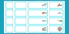 New Zealand Under the Sea Editable Drawer, Peg, Name Labels