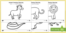Safari Animal Patterns Counting and Colouring Sheets