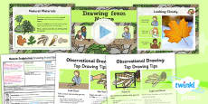 PlanIt - Art KS1 - Nature Sculptures Lesson 2: Drawing from Nature Lesson Pack