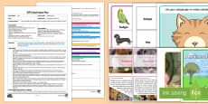 EYFS Adopting Pets Adult Input Plan and Resource Pack