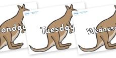 Days of the Week on Kangaroos