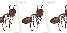 A-Z Alphabet on Ants