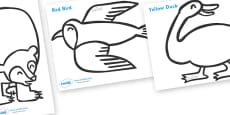 Colouring Sheets to Support Teaching on Brown Bear, Brown Bear