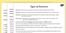 Types of Sentences Differentiated Activity Activity Sheet