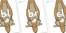 Initial Letter Blends on Platypus to Support Teaching on The Great Pet Sale