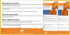 Autumn Differentiated Reading Comprehension Activity Sheet Pack
