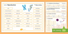 AQA Biology 4.6 Inheritance, Variation and Evolution Word Mat