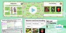 PlanIt - Science Year 6 - Evolution and Inheritance Lesson 6: Adaptation, Evolution and Human Intervention Lesson Pack