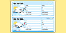 Editable Airline Boarding Pass Gaeilge