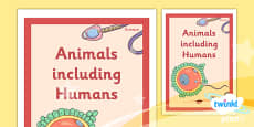 PlanIt - Science Year 5 - Animals Including Humans Unit Book Cover