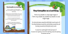 Song Sheet to Support Teaching on The Very Hungry Caterpillar